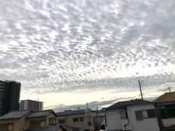Photo_20201201151001
